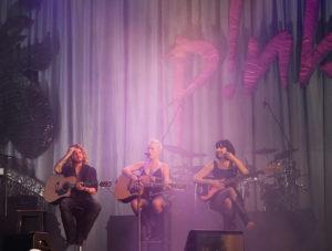 концерт группы фото